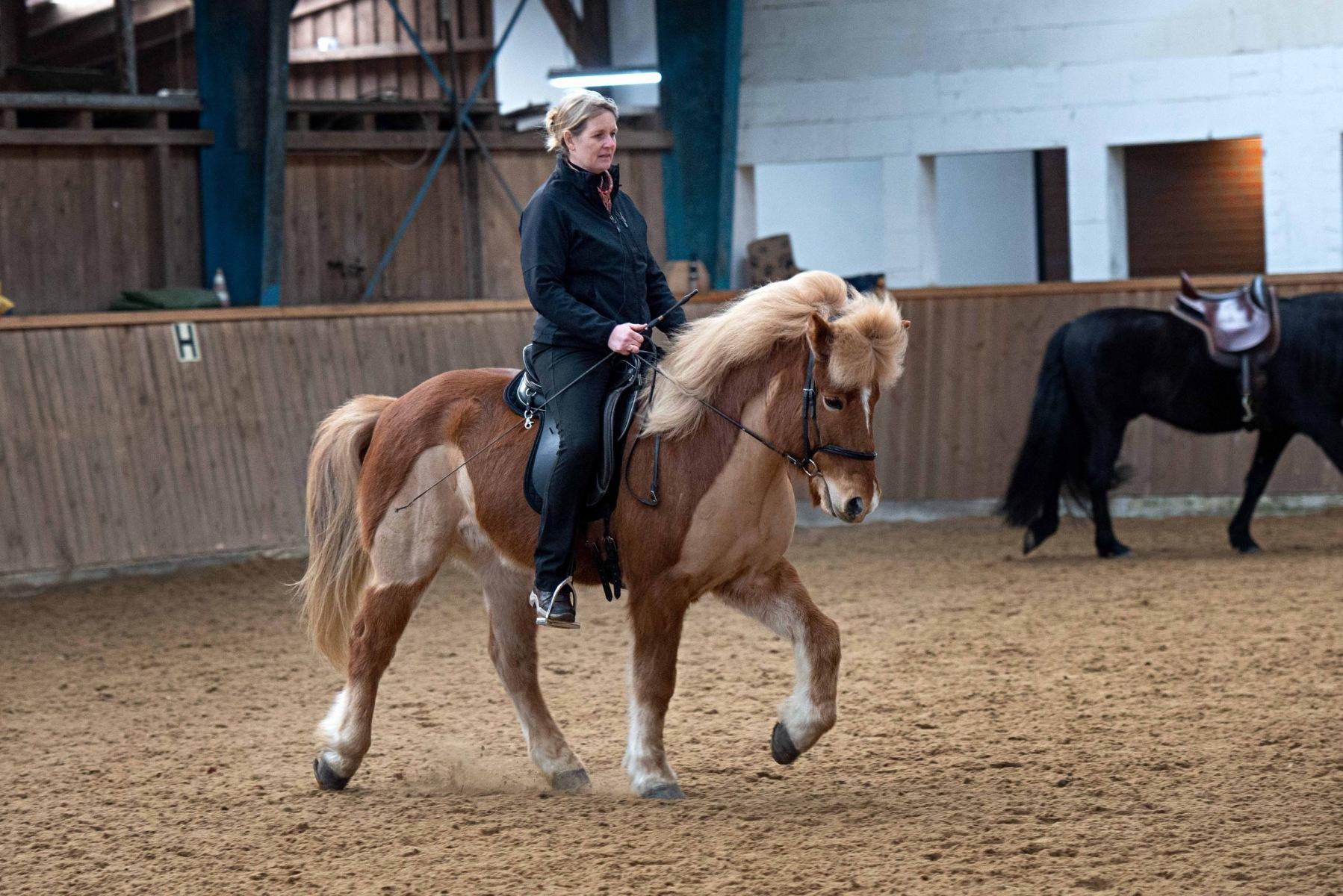 Kaja Stührenberg auf einem Islandpferd im Tölt