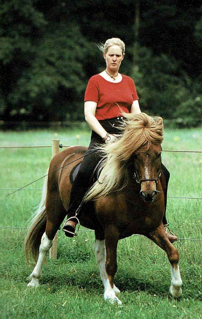 Kaja Stührenberg mit Islandpferde Wallach Skyggnir